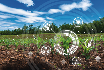 Elements involved in sustainable crop growth.