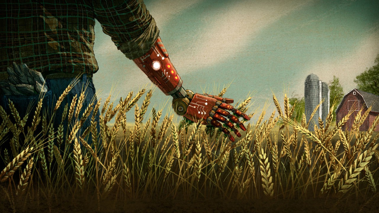 Robot walking through a field of wheat.
