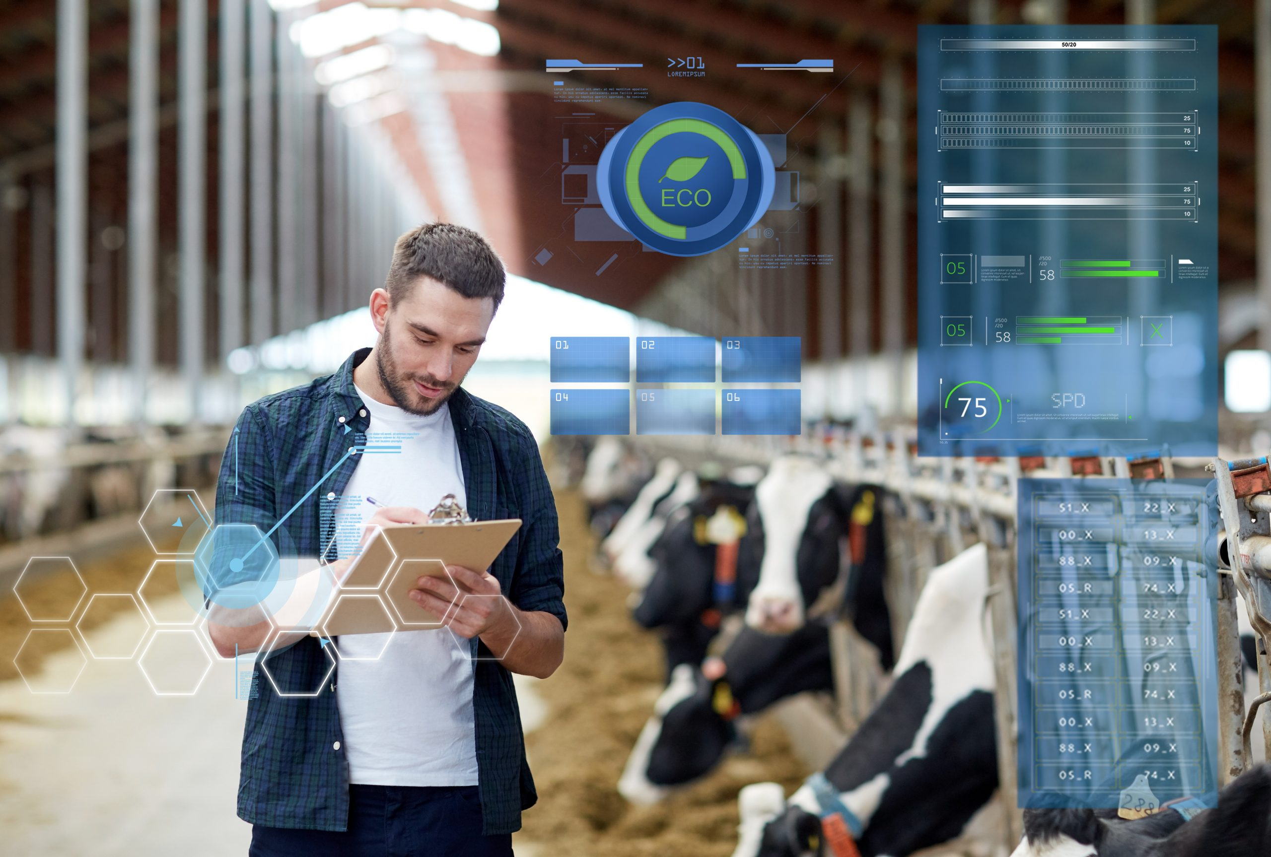 Farmer looking down at a clipboard while standing in a cattle shed, while utilising data analytics to enhance animal management