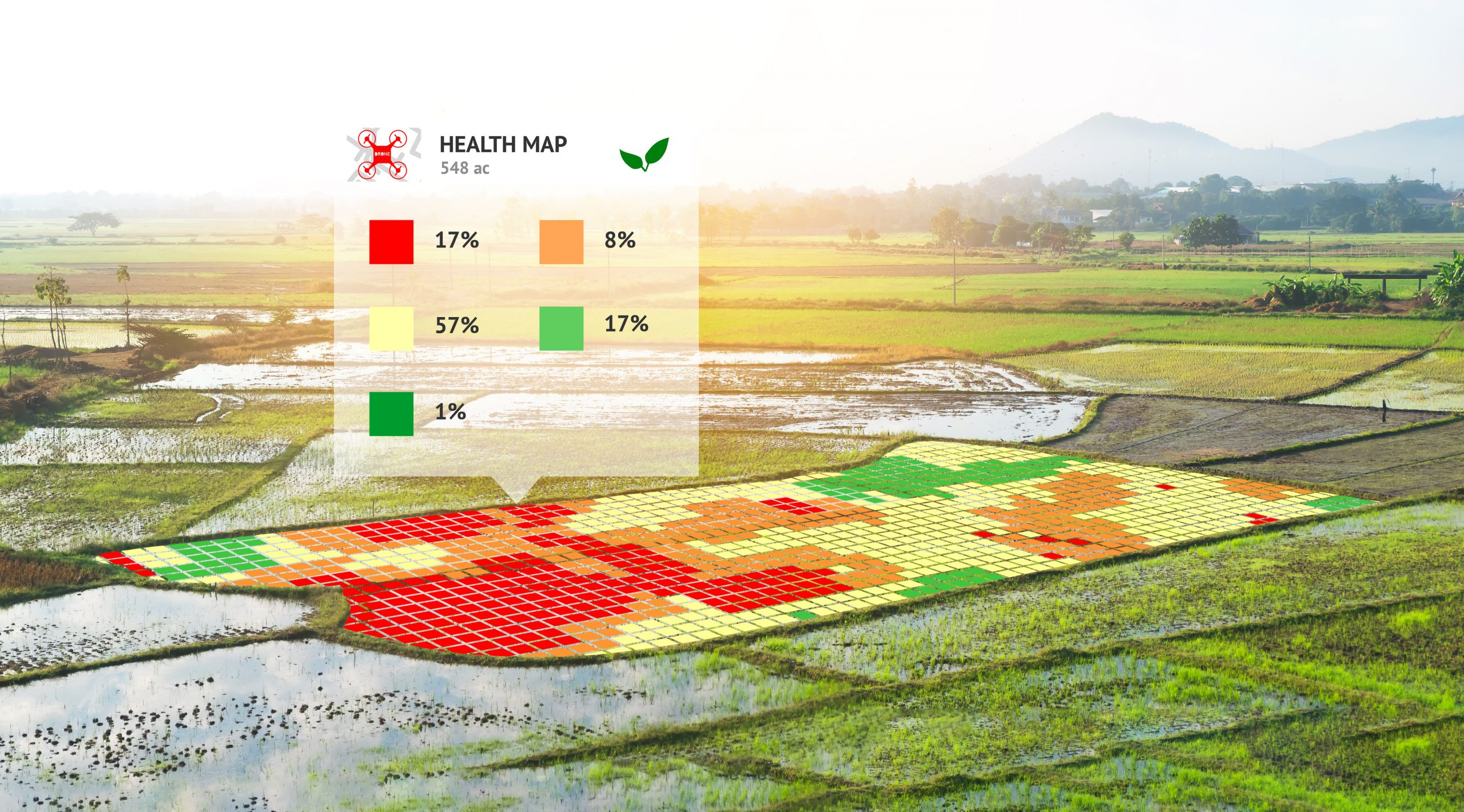 A section of field is analysed for plant health using drone field mapping technology.