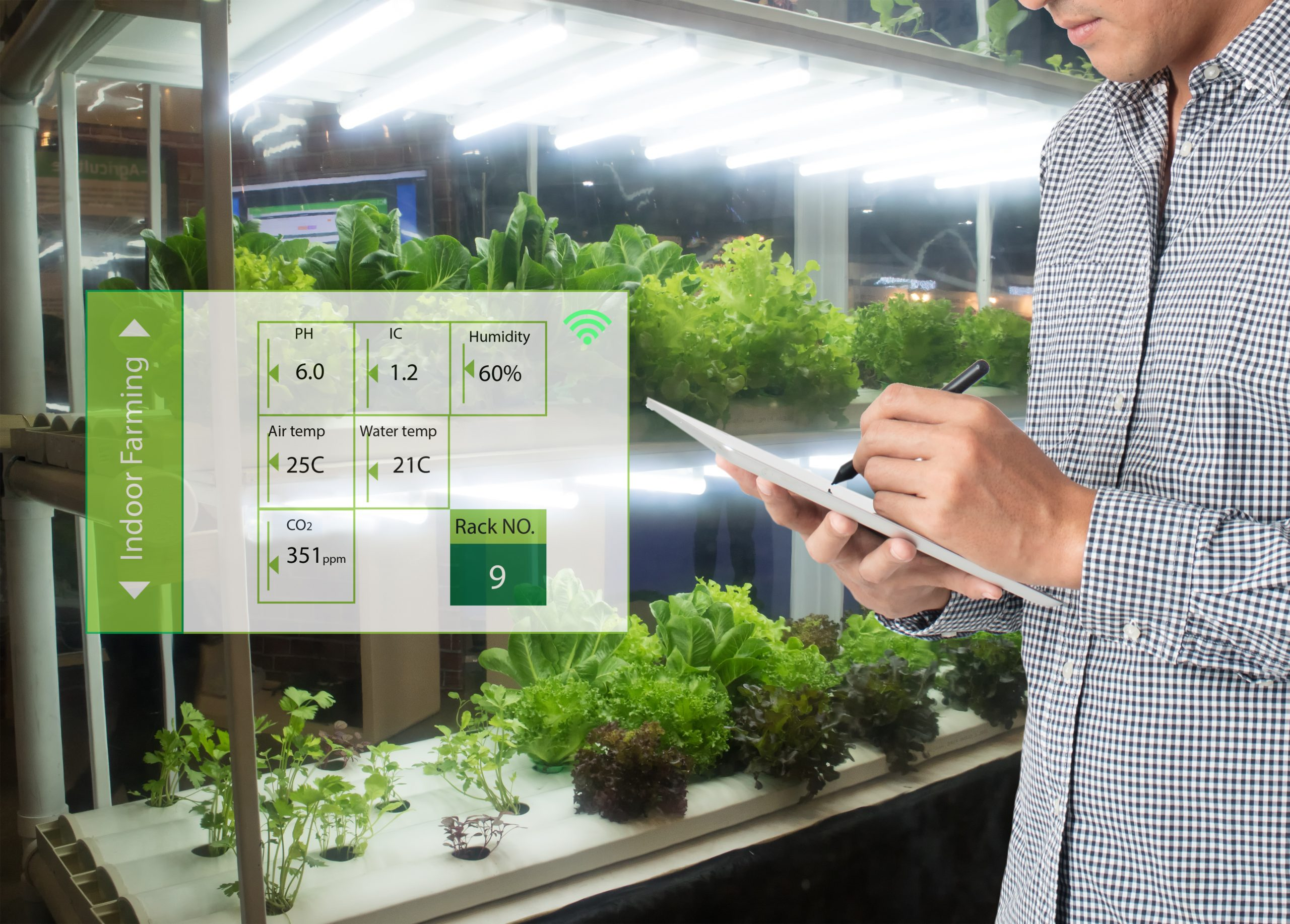 A farmer makes notes on a tablet while analysing the health and growth status of plants in a vertical farm.